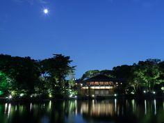 徳川園@徳川美術館やガーデンレストランもあり、名古屋でお散歩するならココ。