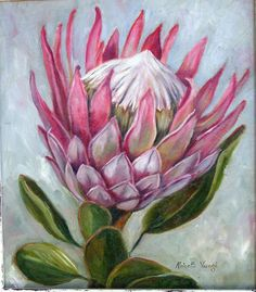 drawings of proteas Protea Art, Protea Flower, Art Floral, Plant Drawing, Painting & Drawing, Watercolor Flowers, Watercolor Art, Painting Flowers, Fabric Artwork