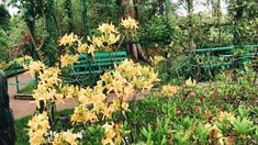 Claude Monet, Gallery, Garden, Plants, Bonjour, Garten, Roof Rack, Lawn And Garden, Gardens