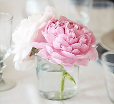 Peonies I love these flowers