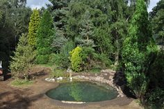 Natural Swimming Pools Warwickshire, Swimming Pond Design ...