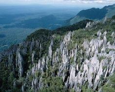 Gunung Mulu National Park (UNESCO World Heritage Site), Borneo, Malaysia