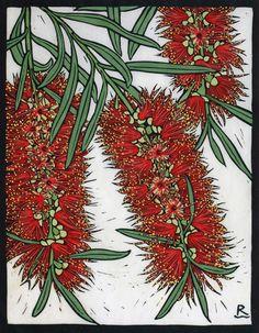 Rachel Newling: Bottle Brush, 28 x 22 cm Edition of 50 Hand coloured linocut on handmade Japanese paper Australian Wildflowers, Australian Native Flowers, Australian Plants, Australian Artists, Botanical Drawings, Botanical Prints, Flannel Flower, Kangaroo Paw, Linocut Prints