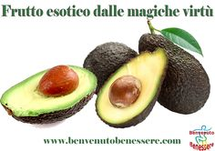 L'avocado abbassa il colesterolo cattivo. - BENVENUTO BENESSERE