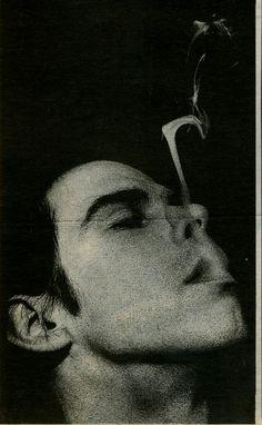 Nick Cave                                                       …