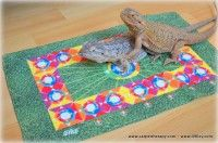 Kids Rugs, Pets, Animals, Home Decor, Animales, Decoration Home, Kid Friendly Rugs, Animaux, Room Decor