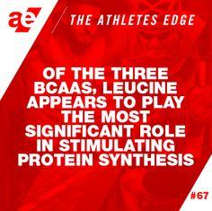 www.athleticedge.com