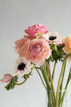 spring florals >> http://amykinz97.tumblr.com/ >> www.troubleddthoughts.tumblr.com/ >> https://instagram.com/amykinz97/ >> http://super-duper-cutie.tumblr.com/