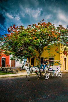 Merida Mexico by Steve Shewchuk on 500px