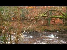 Osho- Rozmowa z ciałem (medytacja uzdrawiająca- kierowana) - YouTube