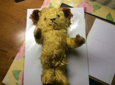 Antique Teddy Bear (Unsure of Maker) Steiff? (See Photos) Fully Jointed #Steiff
