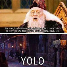 Imagen de harry potter, yolo, and dumbledore