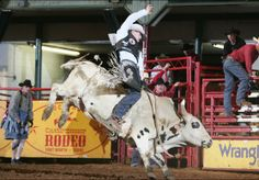 Fort Worth Stockyards Championship Rodeo, every Friday and Saturday @ 8:00pm. Doors open at 6:30.