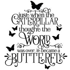 butterfly quotes Silhouette Design Store: Caterpillar Into A Butterfly Inspirational Quote Thank You Quotes, Sign Quotes, Me Quotes, Silhouette Design, Silhouette Cameo, Butterfly Quotes, Zeina, Family Quotes, Word Art