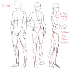 Learn To Draw People - The Female Body - Drawing On Demand Body Reference, Drawing Reference Poses, Anatomy Reference, Drawing Poses, Design Reference, Drawing Tips, Sitting Pose Reference, Male Pose Reference, Drawing Ideas