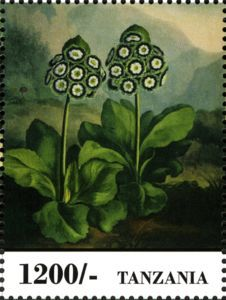 Sello: Flowers (Tanzania) (Fauna & Flora of Africa) Mi:TZ 5000,WAD:TZ021.13