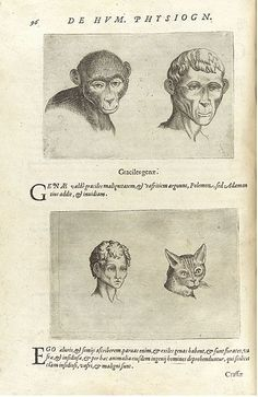 Giambattista della Porta (1535–1615), also known as Giovanni Battista Della Porta and John Baptist Porta, was an Italian scholar, polymath and playwright who lived in Naples at the time of the Scientific Revolution and Reformation. These are pages from his book on physiognomy De humana physiognomonia libri IIII.