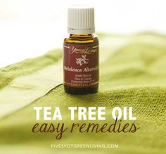 10 Easy and Natural Tea Tree Oil Remedies -