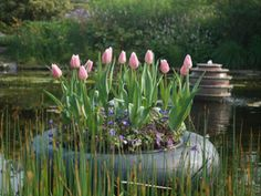floating flower bulbs in an inner tube: Here's the real deal on growing tulips cretively. You're only limited by your imagination. These flower bulb pictures only show 4 ways to use potted Dream Garden, Garden Art, Garden Design, Unique Gardens, Beautiful Gardens, Floating Flowers, Floating Garden, Floating Bed, Floating Island