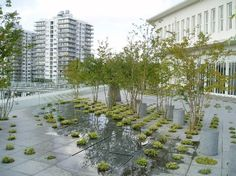 Keio University Roof Garden | Michel Desvigne