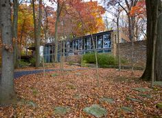 A historic Richard Neutra house nestled in a bucolic nature preserve