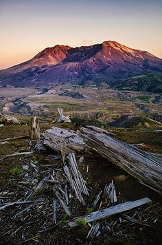 Mount St. Helens sunset, the trees laying on the ground are from the blast