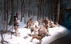 Cani compagni di caccia fin dalla preistoria: dal Giappone antico lo studio sui Jōmon :http://www.qualazampa.news/2016/10/06/cani-compagni-di-caccia-fin-dalla-preistoria-dal-giappone-antico-lo-studio-sui-jomon/