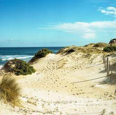 Rye Beach Rye, Mornington Peninsula, Victoria, Australia