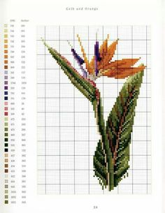"""ru / mtecuka - Альбом """"Thea Gouverneur Flower portraits in Cross Stitch"""" Cross Patterns, Counted Cross Stitch Patterns, Cross Stitch Designs, Cross Stitch Embroidery, Embroidery Patterns, Cross Stitch Love, Cross Stitch Flowers, Cross Stitch Landscape, Patterns In Nature"""