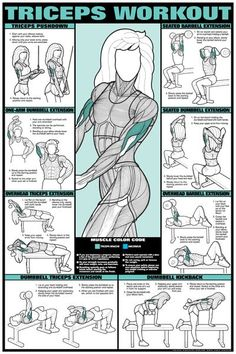 Tricep Workout Poster - #Workout Exercises| http://workoutexercisesguide.blogspot.com