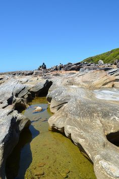 Depending on tides, sections of the walk can be taken along the rocky shoreline - Royal National Park - NSW by neil_fahey, via Flickr