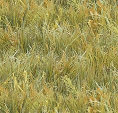 This light green grass is suggestive of the grasses found on the prairies. From Elizabeth's Studio Fabrics line, 100% quilt store quality cotton. Price match