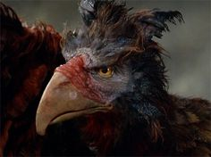 """The Gryphon from """"Dreamchild"""" by Jim Henson's Creature Shop"""