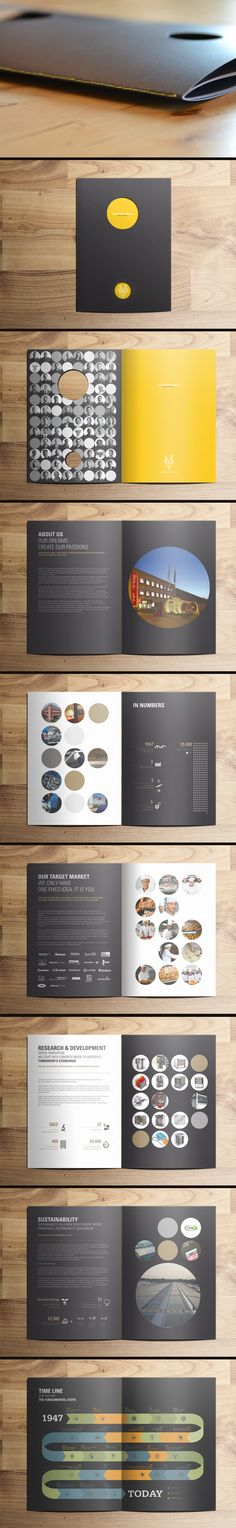 Company Profile Design Graphics Void Studio