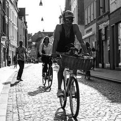 Maastricht, bycicle, hipster, puppy