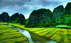 Rice field and river in NinhBinh, Vietnam by Degist nguyen on 500px