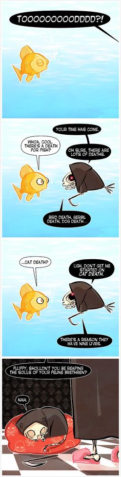 Death waits for no man... or goldfish...just for cats
