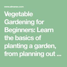 Vegetable Gardening for Beginners: Learn the basics of planting a garden, from planning out and designing the garden space to choosing the best vegetables to grow in your area. Gardening advice from The Old Farmer's Almanac. Starting A Vegetable Garden, Vegetable Garden For Beginners, Vegetable Garden Design, Gardening For Beginners, Vegetable Gardening, Gardening Tips, Urban Gardening, Easy Vegetables To Grow, Planting Vegetables