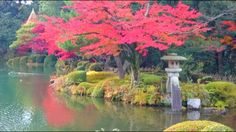 Red foliage and Kotoji Lantern at the Kenroku Garden, Kanazawa, Japan(Ver. 3. 2)