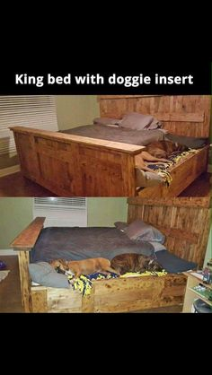 King size bed with dog beds attached