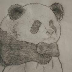 Panda aburrido :/