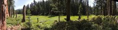 Crescent Meadow panorama at Sequoia National Park
