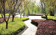 conceptLANDSCAPE #landscapearchitectureplaza