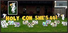 happy birthday yard greeting lawn card cows gone wild signs rental