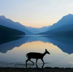 Glacier National Park, Montana photographer, Kevin LeFevre