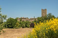 Umbria & Tuscany Border holidays encompass great art, a monastic calm and the lakes, but also a lively spot at Perugia. See our holiday guide! Heated Pool, Tuscany, Monument Valley, Villa, Family Reunions, Italy, San, Vacation, Places