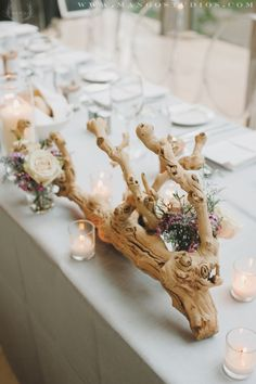 Ruffled®   See ads - Sandblasted Grapewood Branches - Everything Floral
