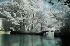 Gorgeous! #photography #landscapes
