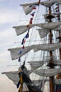 Tall Ship - David Fuller photo