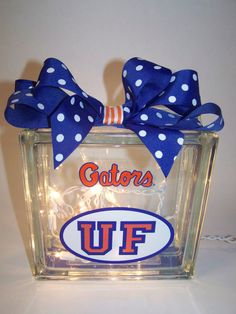 Florida Gators Lighted Glass Block by HaloDesignInteriors on Etsy, $35.00